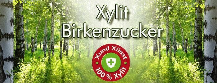 Xylit Birkenzucker