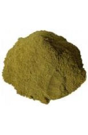 Moringa Oleifera Blattpulver, superfein 500g