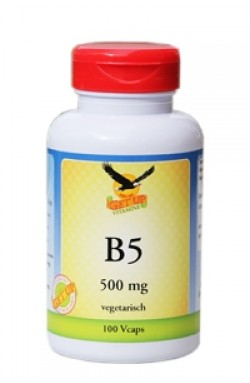 Vitamin B5 500mg, 100 Kaps (Pantothensäure)