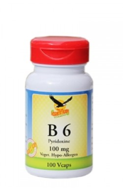 Vitamin B6 100mg, 100 Kaps (Pyridoxin)