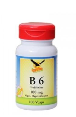 Vitamin B6 100mg, 100 Kaps (Pyridoxin)