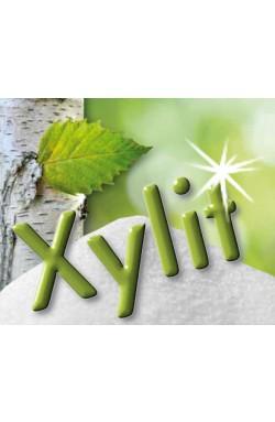 Xylit je 4g Pulver, 100 Tütchen