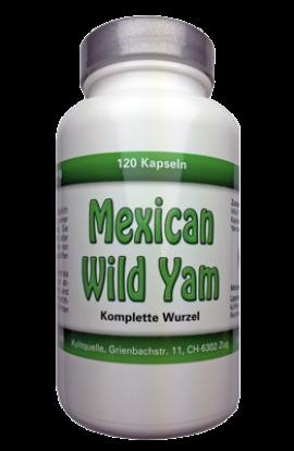 Mexican Wild Yam Kapseln ganze Wurzel