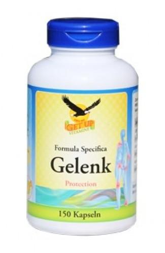Gelenk Protection MSM Chondroitin Glucosamin