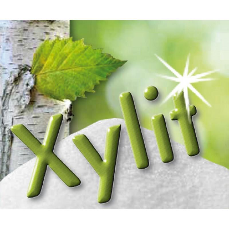 Xylit / Xylitol (Birkenzucker) 500g gentechfrei, feinkörnig