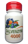 Salvenzym 4000 Fruchtkomplex bestellen