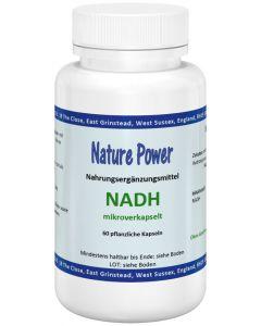 NADH Coenzym 1 vegetarisch
