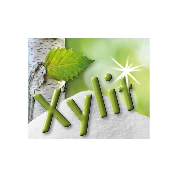 Xylit je 4g Pulver, 100 Tütchen zu 4g